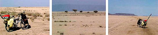 Danakil desert - Djibouti