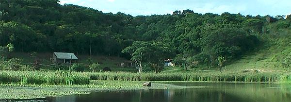 10-fazenda-nova-vrajadhama